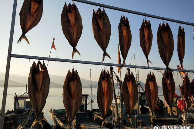 特色渔家宴、甜晒鲅鱼…青岛青山渔村登《舌尖3》