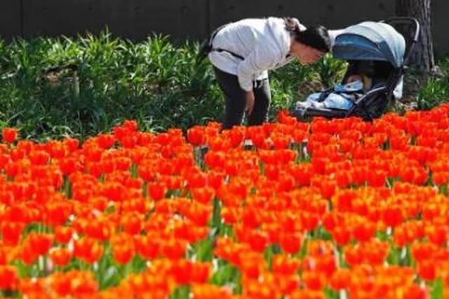 """多地提前迎""""春姑娘"""",www.hg3210.com """"春捂""""到底应不应"""