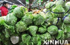 冬季蔬菜生长迟缓产量降低 山东菜价连续两周上涨