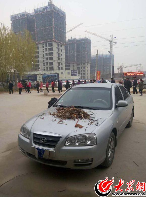 菏泽一小区业主停车占用广场舞场地 车牌遭破坏
