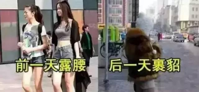 """山东发布寒潮黄色预警 """"春捂""""记住这些关键词"""