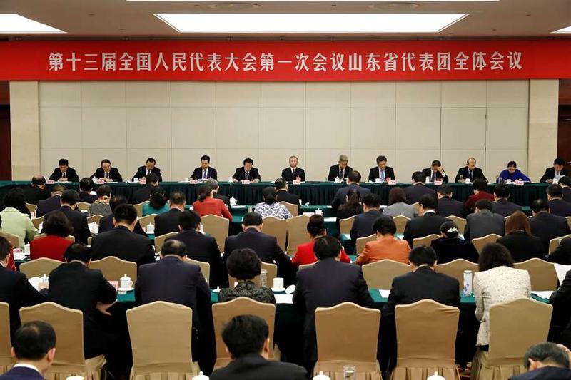 山东代表团举行第五次全体会议 审议宪法修正案草案建议表决稿