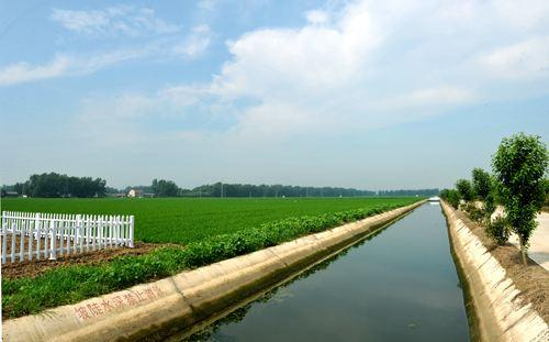 申城试点农业水价综合改革 农田用水成本普降三成