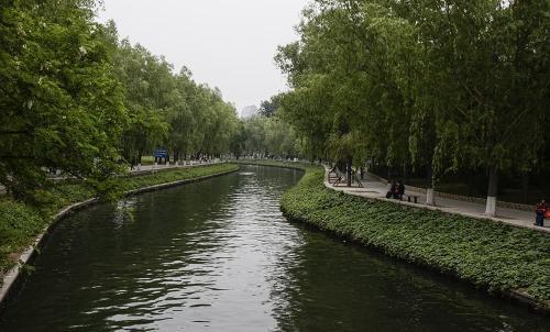 城市黑臭水体整治巡查组进驻上海 受理市民来电和举报