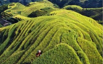 环境优美 盘点中国9大观景酒店