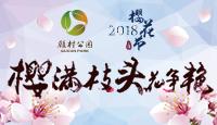 2018上海樱花节3月16日揭幕 樱满枝头花斗丽