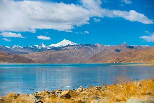 游客西藏之行因高反落下终身残疾 将旅行社告上法庭