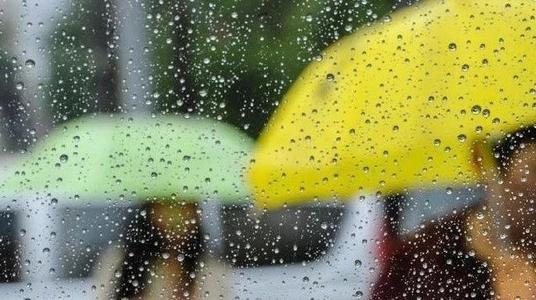 沪科学家原创降雨径流模型 揭秘降下来的雨去哪了