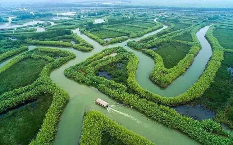 市民周边游又添新去处 上海-洪泽湖-宿迁旅游专线开通