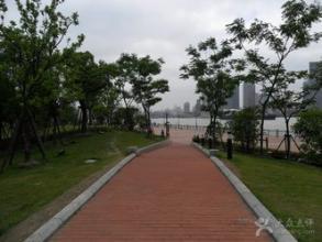 滨江大道频现市民为走近路翻越栏杆 目睹者:如鲠在喉