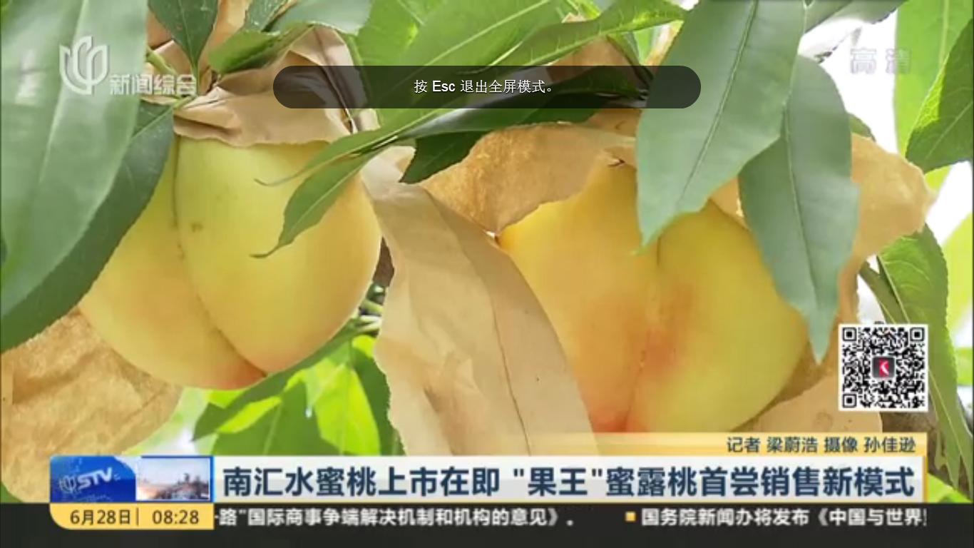 视频:南汇水蜜桃上市在即 果王蜜露桃首尝网上预售