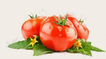 16种常见蔬菜的挑选窍门