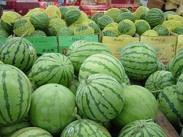 沪产甜瓜西瓜推迟20天上市 瓜价或上涨