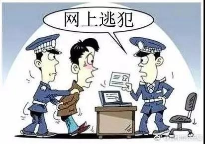 男子涉嫌诈骗被通缉 携带六张身份证仍难逃法网