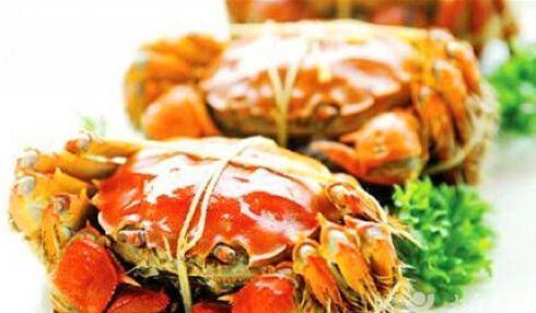 视频:上海本地蟹上市膏黄肉肥 生态养殖营养好