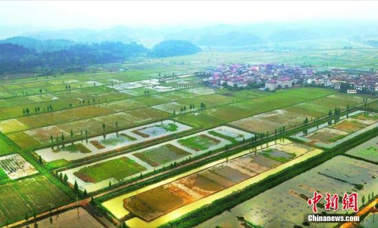 今年起我国将每年农历秋分设立为:中国农民丰收节