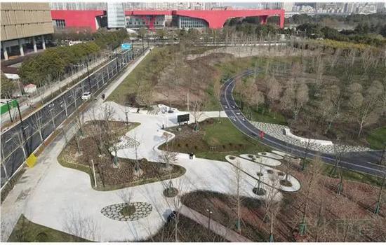 浦东文化公园景观提升工程竣工 上海再添森林景观