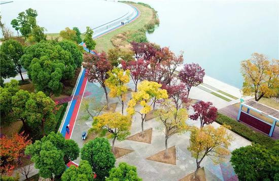嘉定年内再增10条健身步道、20个健身苑点和10个球场