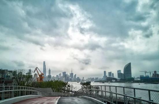 鲍伶俐今天摄于浦东滨江洋泾港桥