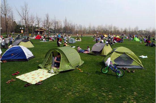 世纪公园大草坪封闭一个月 进入黑麦草播种期