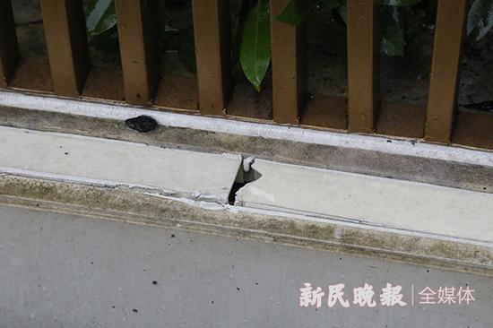 图说:东区云照路围墙经修复后仍有破损 新民晚报王凯摄(下同)