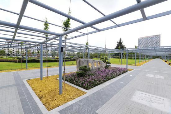 园内精选栽植了牛岛、熊野、阿知等