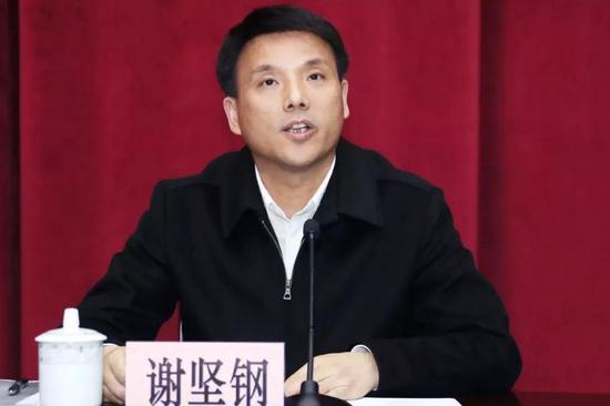中共杨浦区委书记谢坚钢