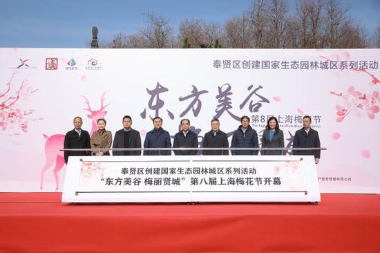 图说:第八届上海梅花节今启幕。奉贤区新闻办供图(下同)