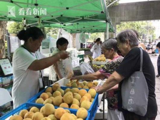 沪产黄桃进入上市高峰期 最佳赏味期20天左右
