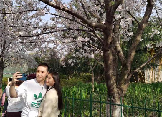 上海最美地铁站成赏樱打卡点 鲁迅公园举行首届樱花节