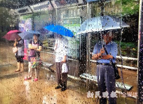 图说:清早雨中,公交车站台上就聚集了不少候车人 种楠 摄