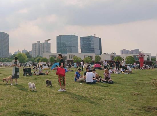 """徐汇西岸营地是一大片""""宠物友好""""区域"""