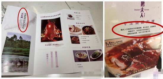 米其林一星餐厅烧鹅产地造假 鹅夫人被罚款3万元