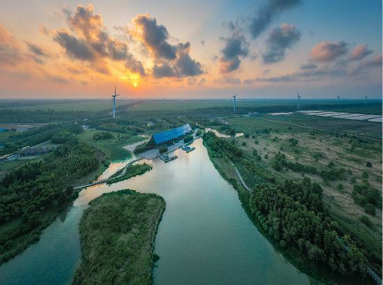 崇明区打造世界级生态岛 铺好生态底色建设宜居家园