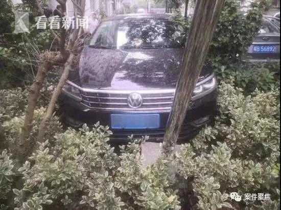 女子开车冲进绿化带还撞坏监控 无证驾驶被行拘15日