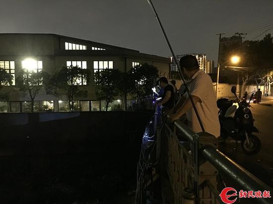 杨浦区定海桥竟变身钓鱼场 垂钓者蜂拥而至