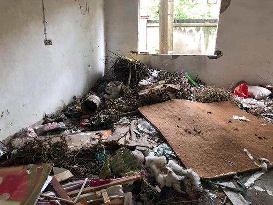 △废楼敞开的窗户为附近居民偷倒装修垃圾提供了方便。图上是校区原食堂内堆满垃圾。