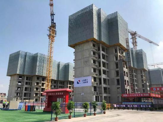 图说:临港新片区将建设28栋18层公租房。