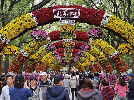 第十三届中国菊花展览会现场 本文图片均由上海共青森林公园提供