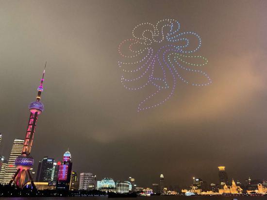 图片来自第十届中国花博会筹备组、崇明区横沙乡人民政府