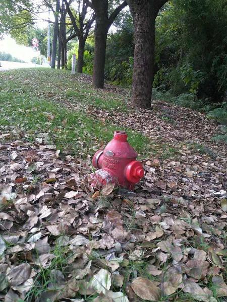 路口消防栓出水口险被土壤埋没 市民质疑能否正常出水