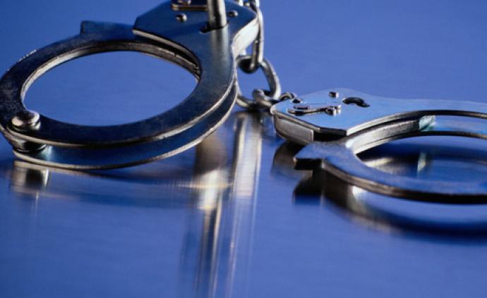 男子怀疑被戴绿帽拿女友俩名牌包补偿损失 因盗窃获刑