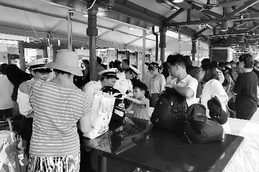 ■ 劳动报记者 叶佳琦 文/摄
