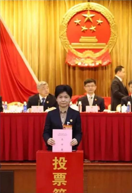 王岚参加投票