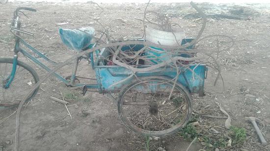 六旬阿婆误入工地捡废品被埋身亡 疑因挖掘机司机疏忽
