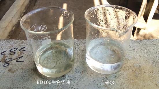 """地沟油经过一系列处理后,精制得到了BD100生物柴油,和自来水比较,清澈度并不逊色,只是颜色微黄。BD100生物柴油和矿物柴油按照5:95的比例""""勾兑"""",就成了B5生物柴油"""