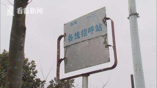 沪一公交站设在绿化带 乘客手抓树枝脚踩泥地才能上车