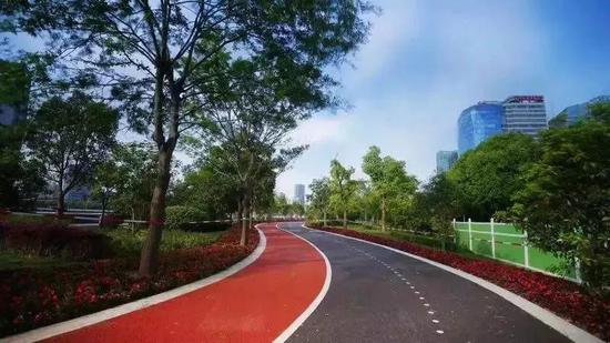 上海公布1326条健身步道全名单 市民可健步放松身心