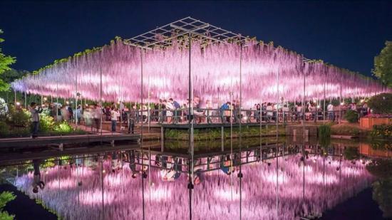 嘉定本年筹划新增40万㎡绿地 紫藤文化园已初步落成
