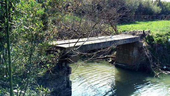 金山工业区启动10座古桥修护工程 一桥一方案